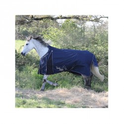 Mors simple 2 anneaux poney